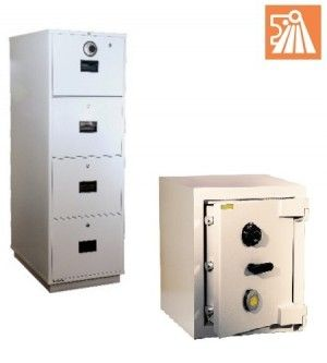 LION Safes & Fire Resistant Cabinet
